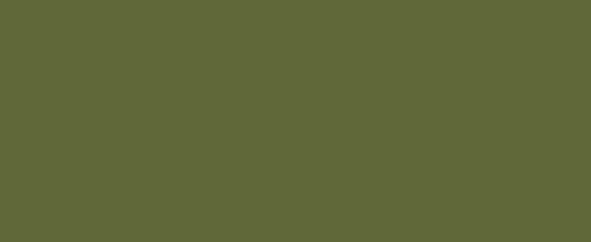 1canoe2 logo
