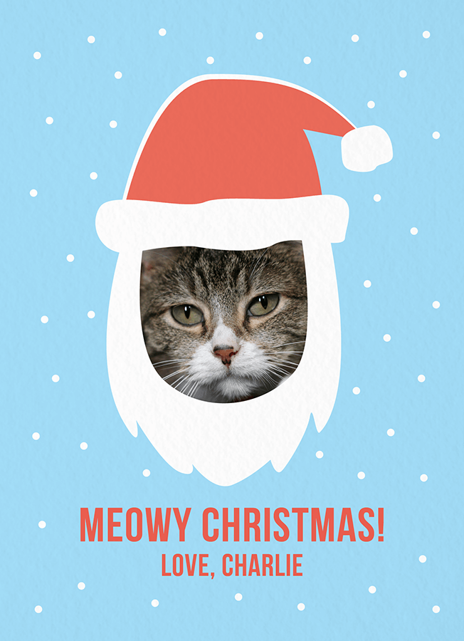 Meowy Christmas Photo Card
