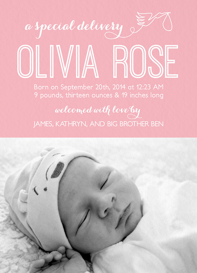 Whimsical Pink Stork Birth Announcement