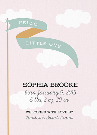 Pink Sky Banner Birth Announcement