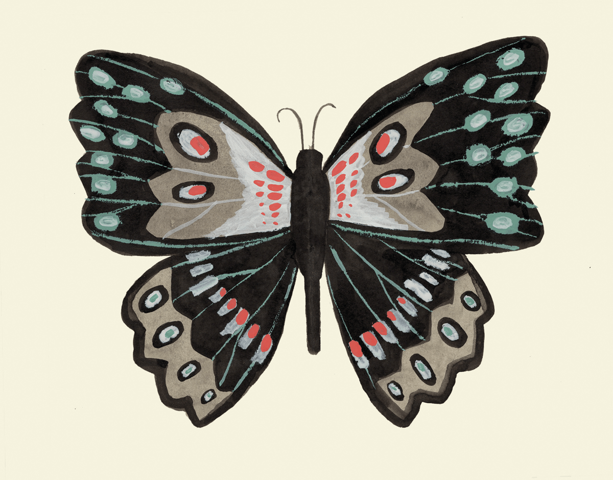 Beautiful Painted Butterfly Art Card