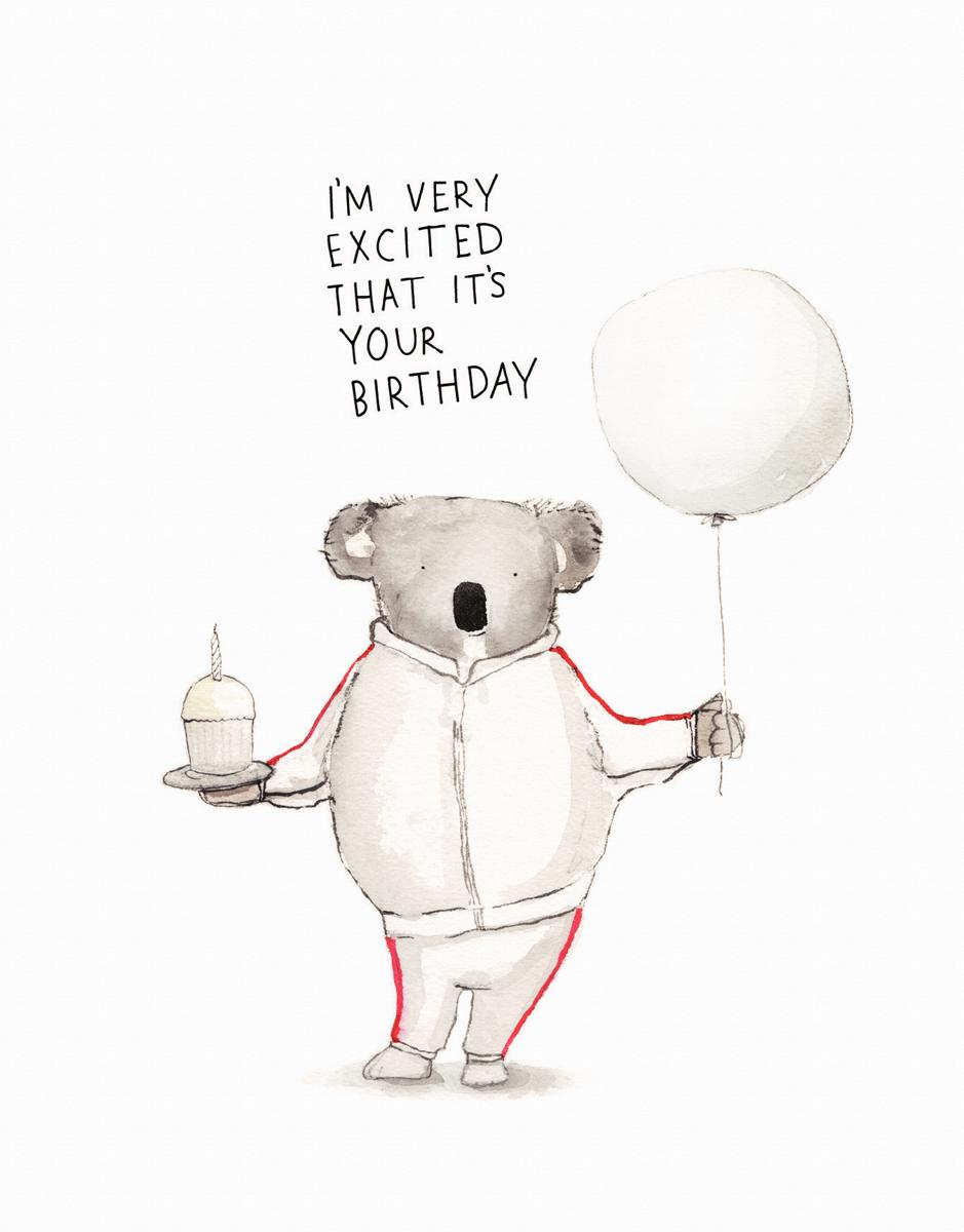 Koala Excitement