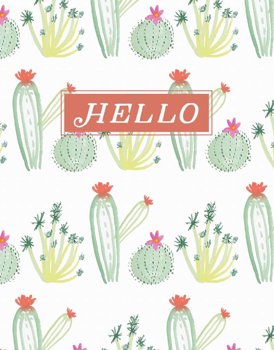 Hello Succulents