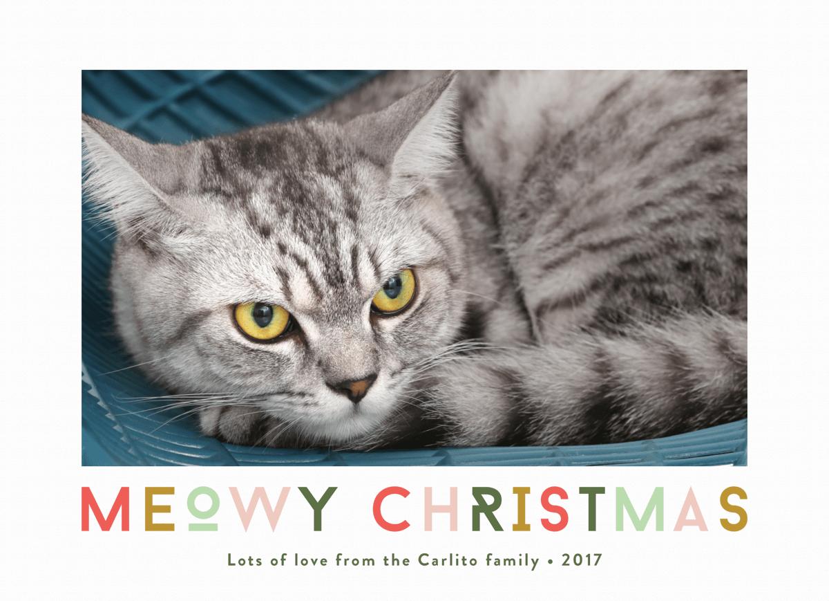 meowy christmas photo card