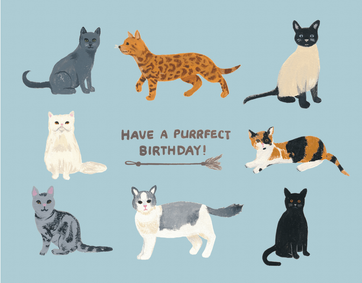 Birthday Cats By Forage Paper Co
