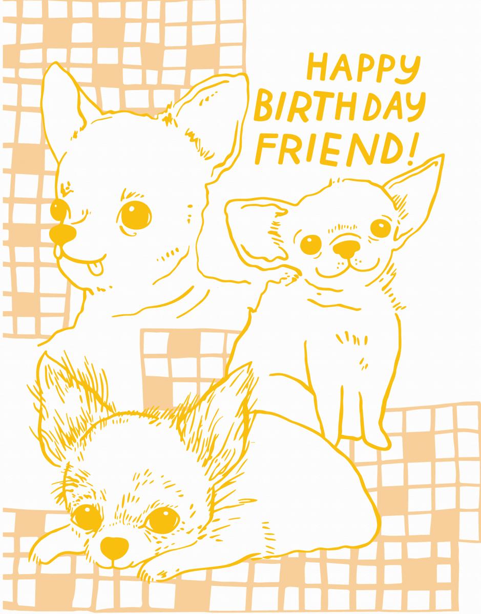 Chihuahua Birthday