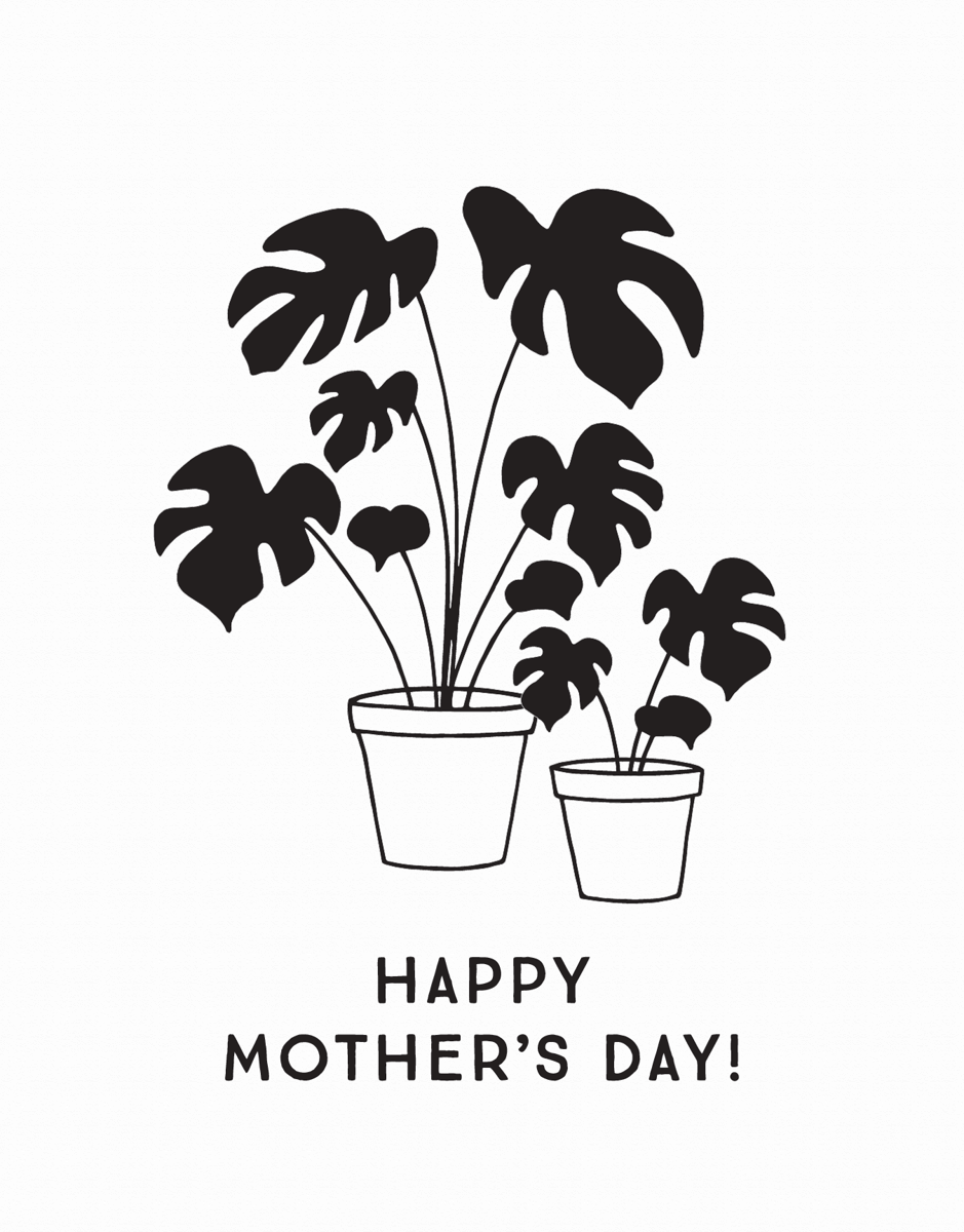 Potted Plants Mother's Day