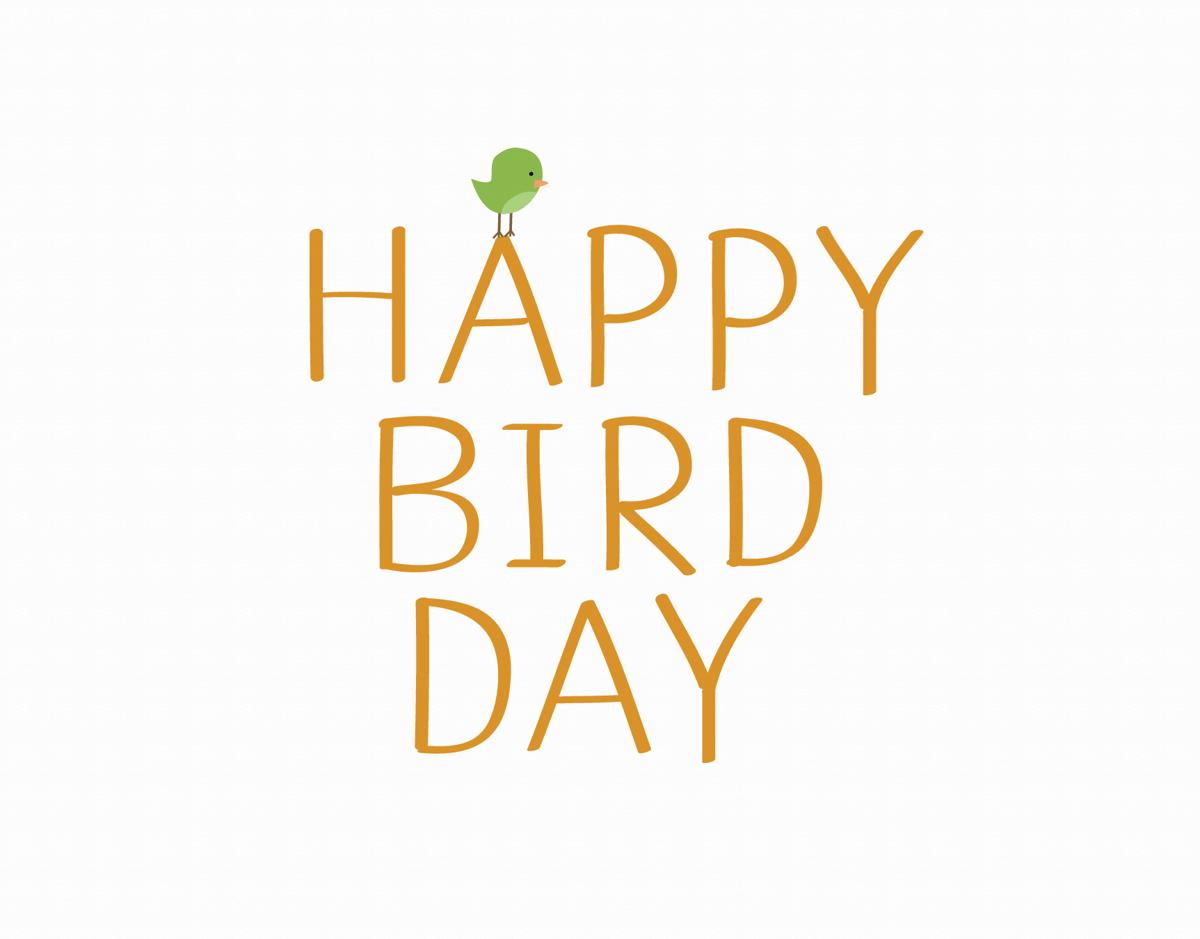 Bird Day