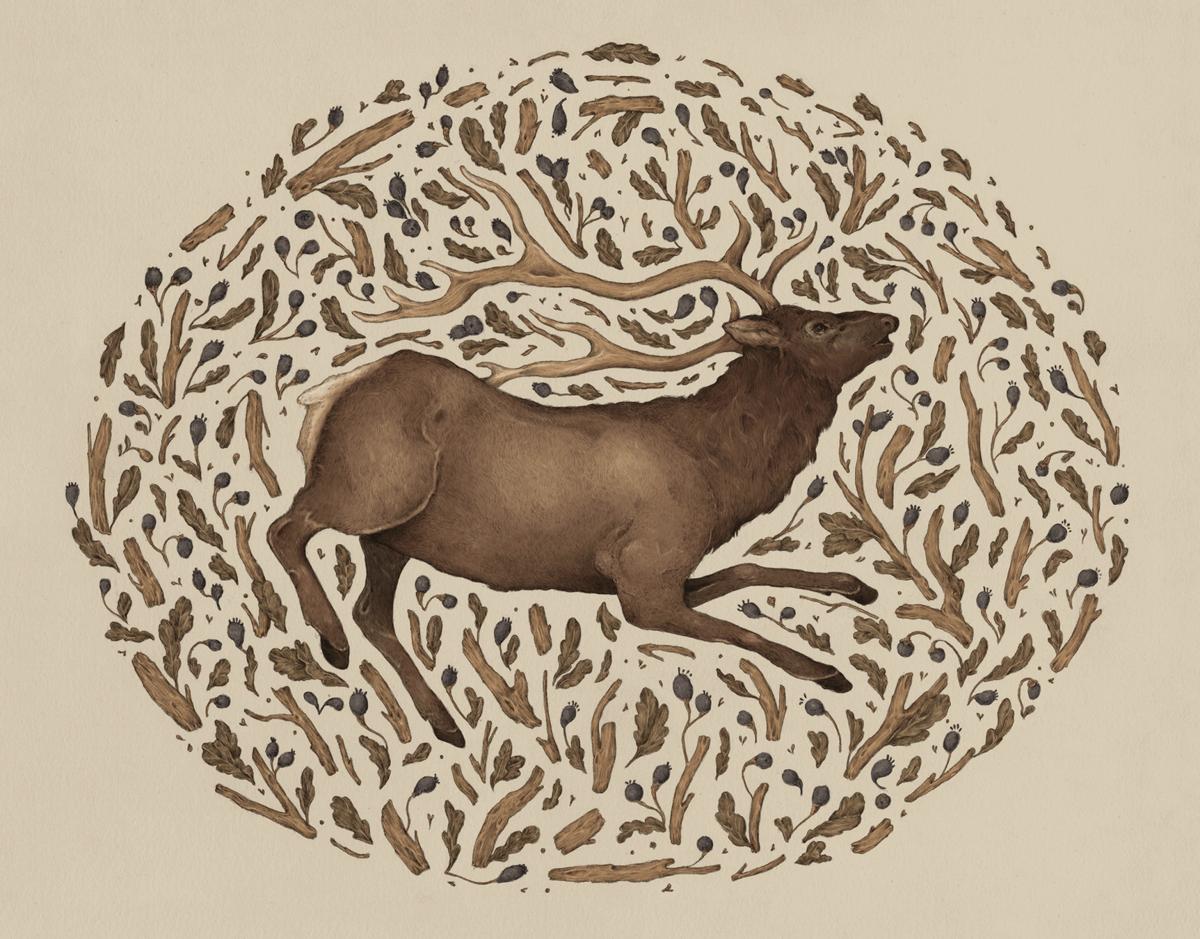 Beautiful Hand Painted Elk in Nature Art Card