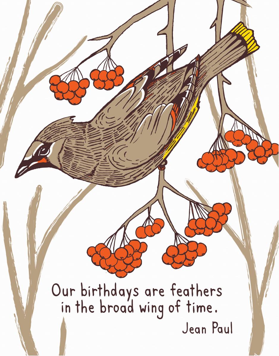 Birthday Feathers