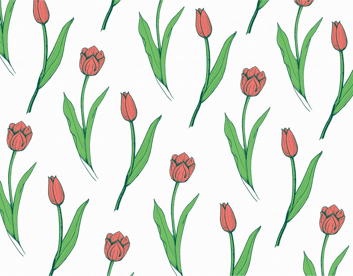 Tulip Pattern