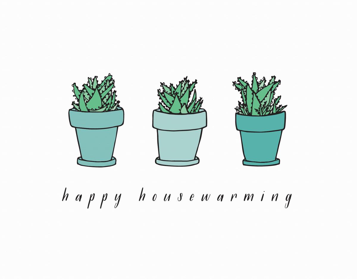 Housewarming Aloe
