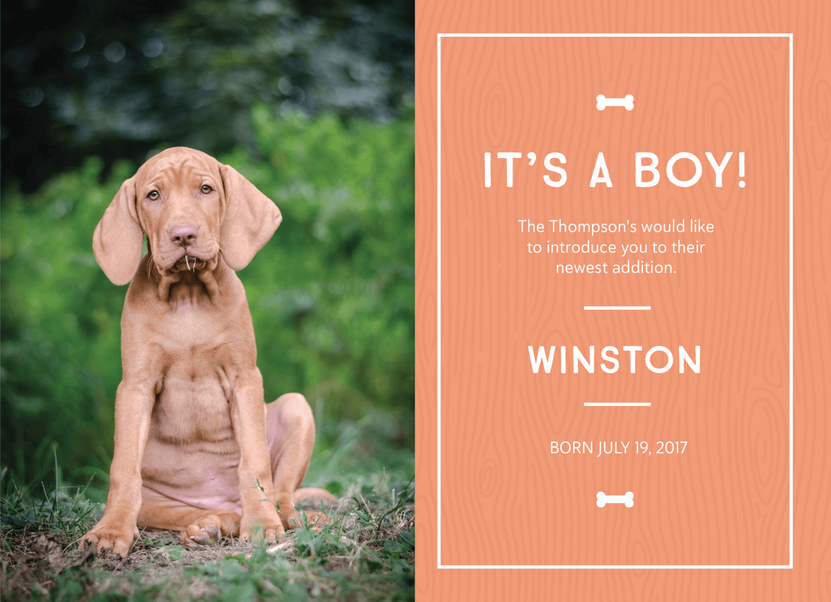 New Puppy Announcement