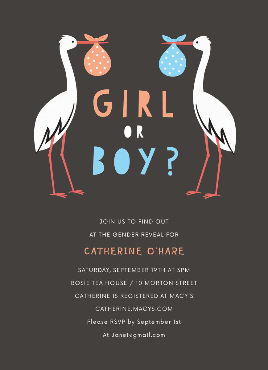 Stork Gender Reveal