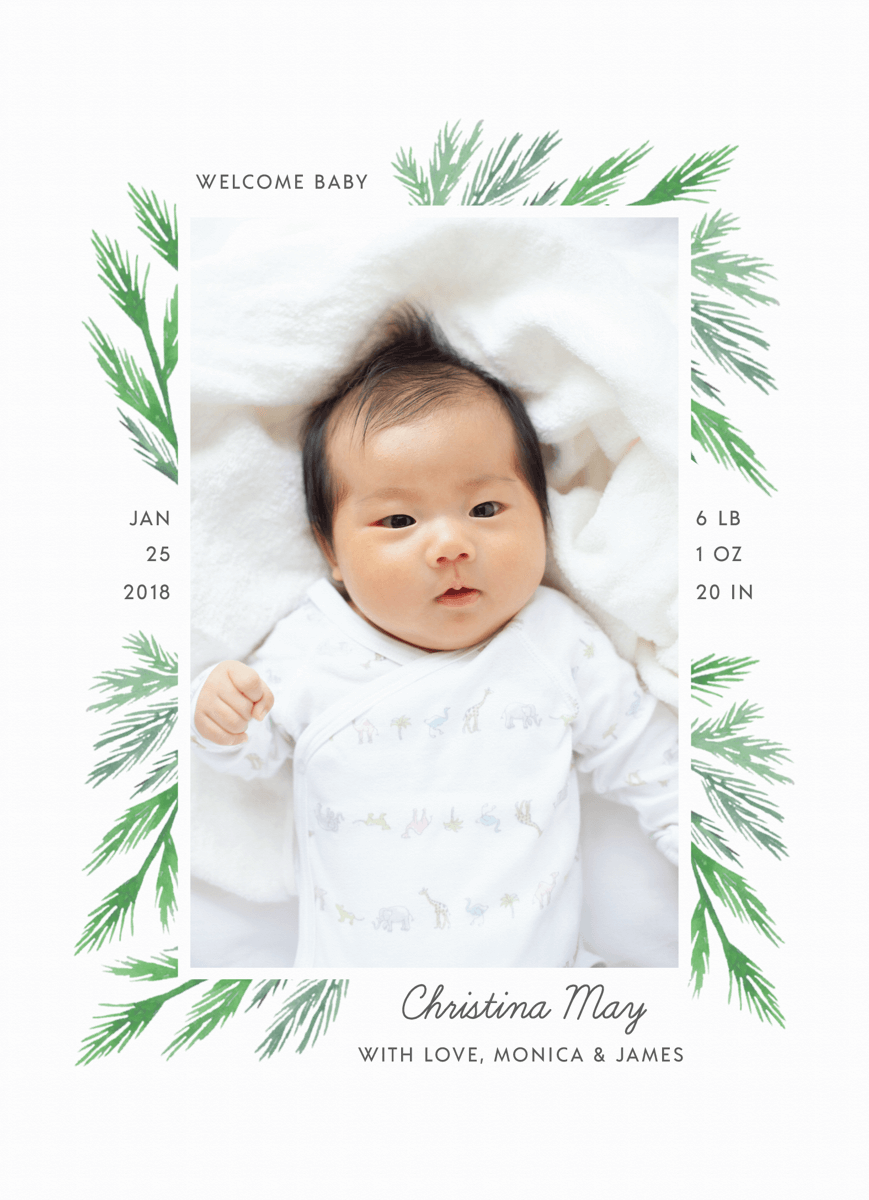 Pine Branch Birth Announcement