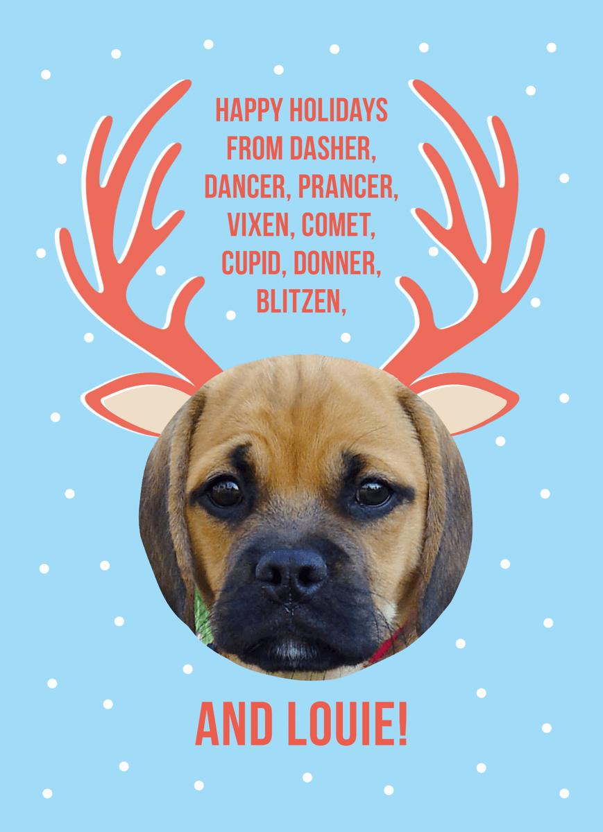 Custom Reindeer Pet Holiday Card