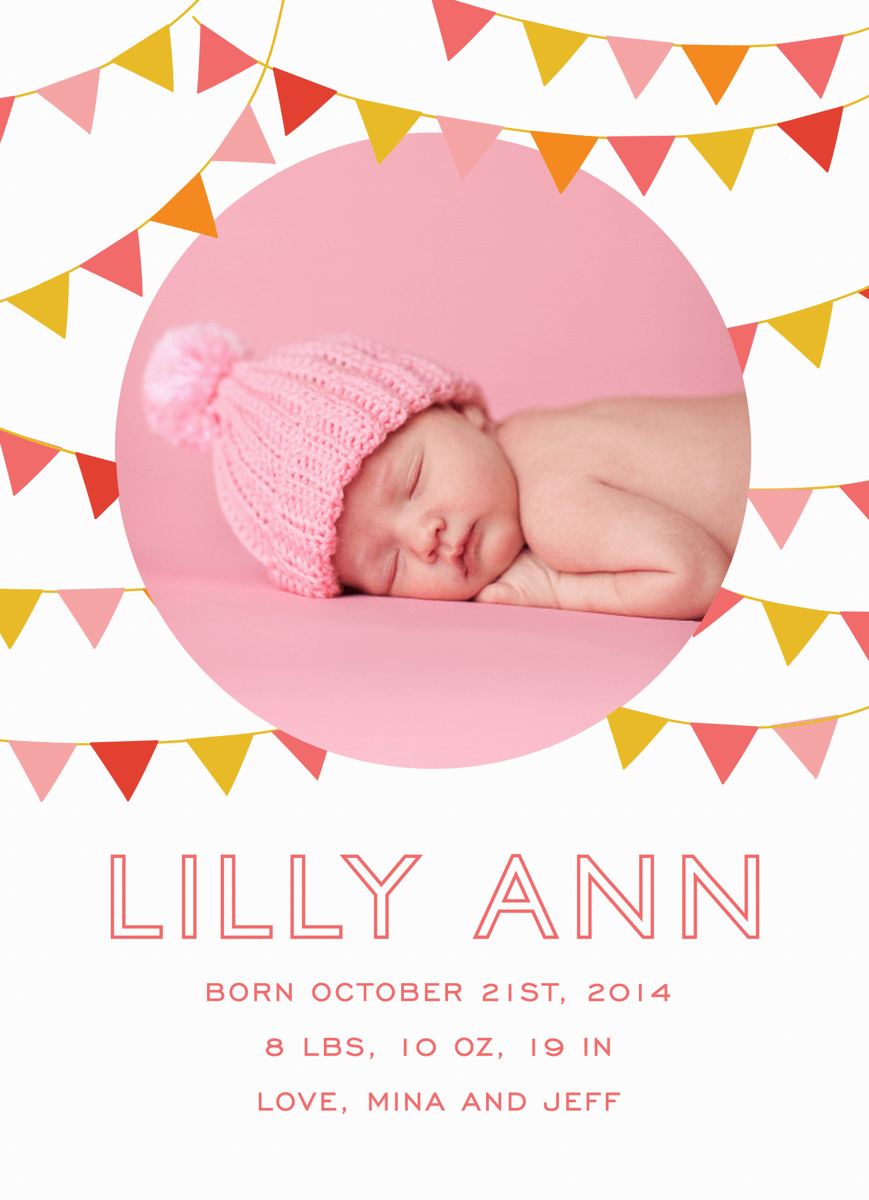 Pink Flags Banner Birth Announcement