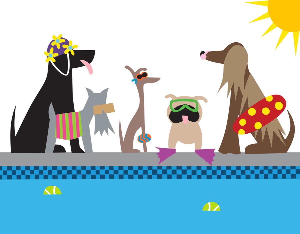 Doggie Swim Party
