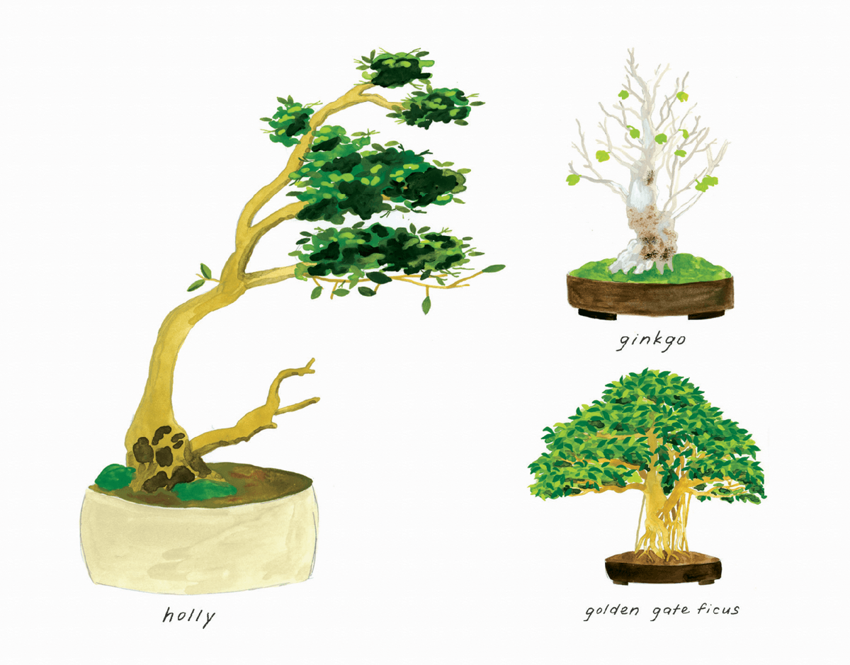 Painted Bonsai