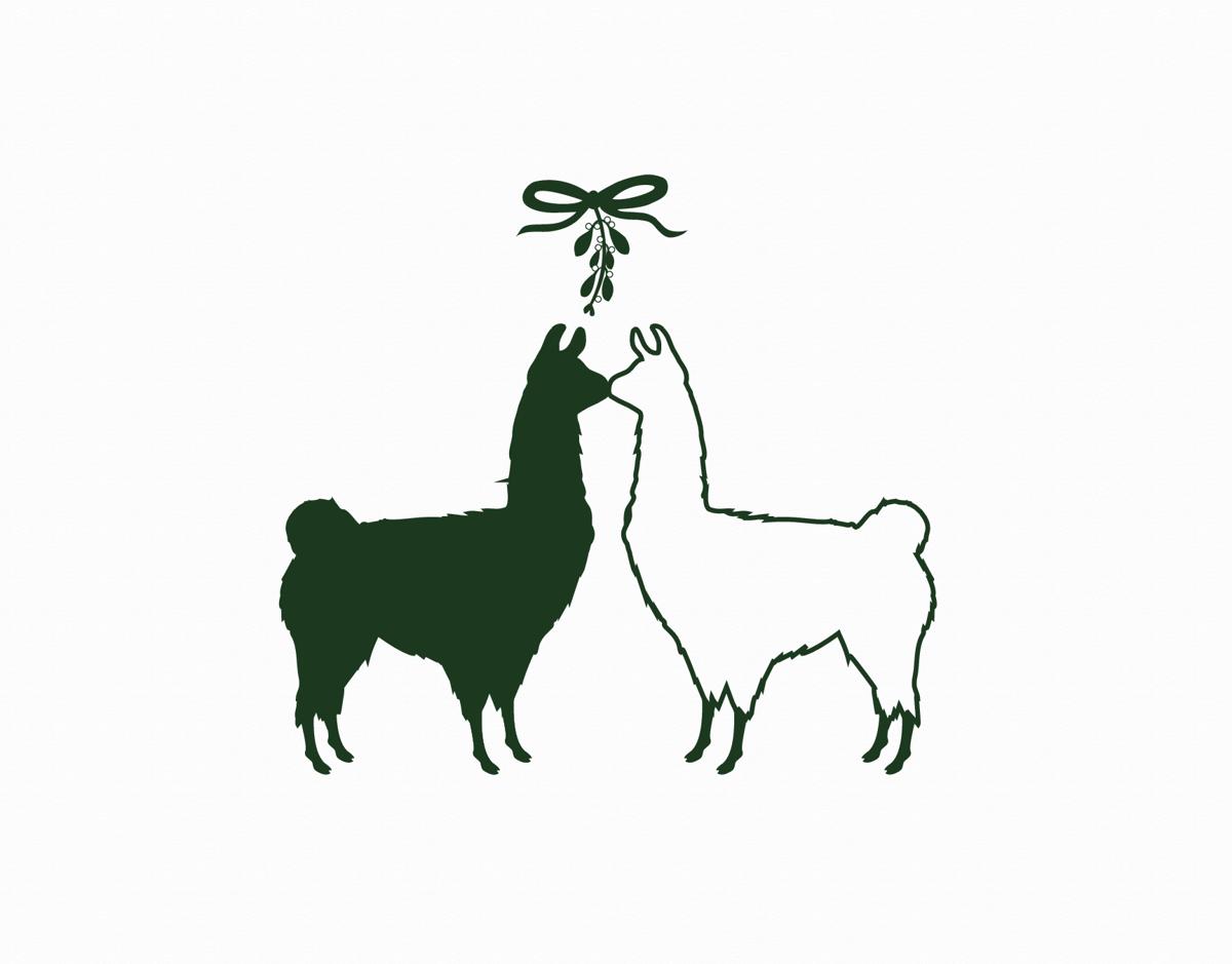 Mistletoe Llamas Holiday Card