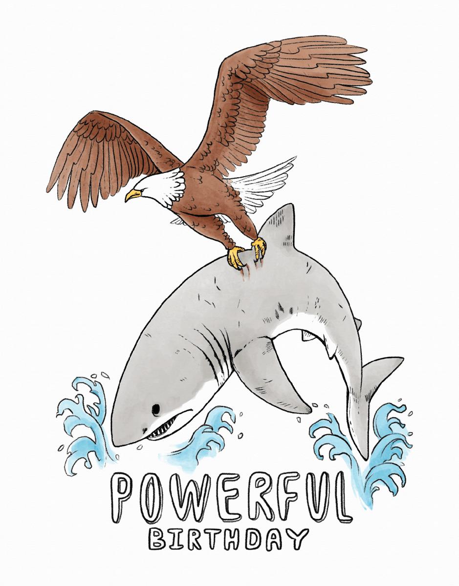 Shark Birthday