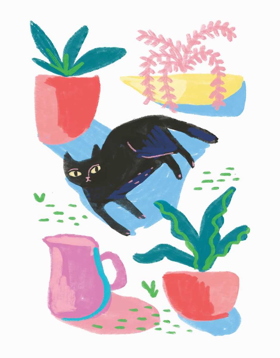 Cat Repose
