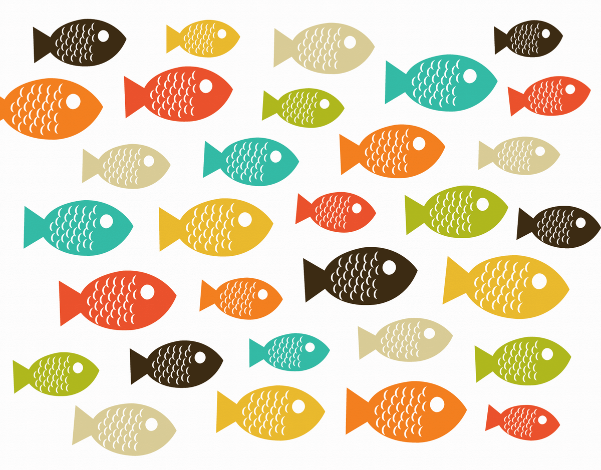Muticolor Fish Greeting Card