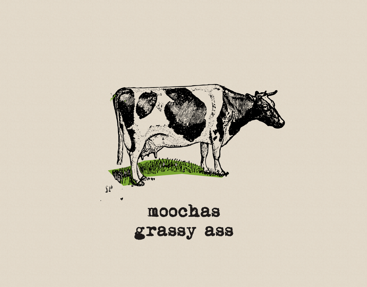 Funny Cow Thank You Card