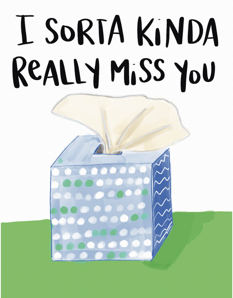 Sorta Kinda Miss You