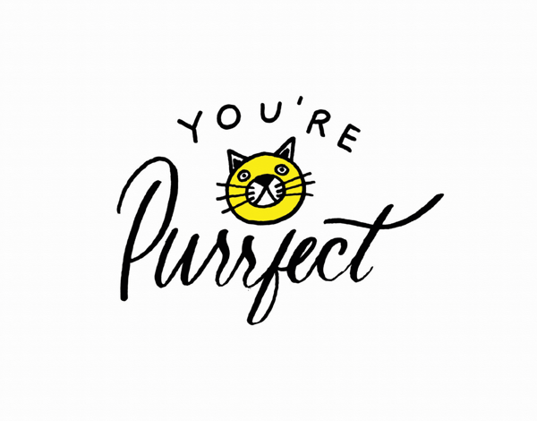 Purrfect