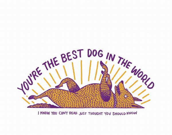 Best Dog