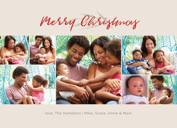 Very Merry Photos