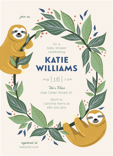 Baby Sloths