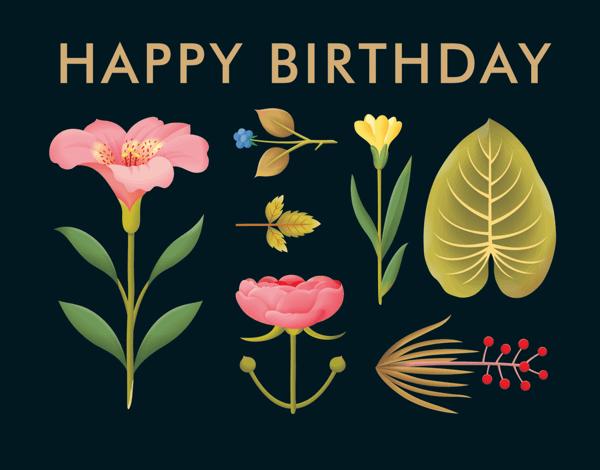 Birthday Plants