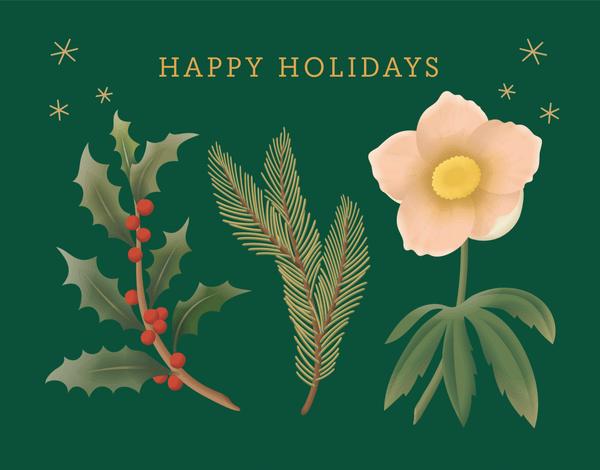 Green Holiday Plants