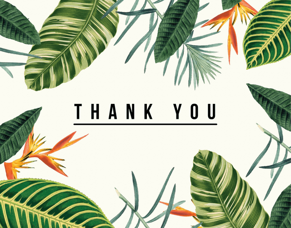 Tropical White Thank You Card