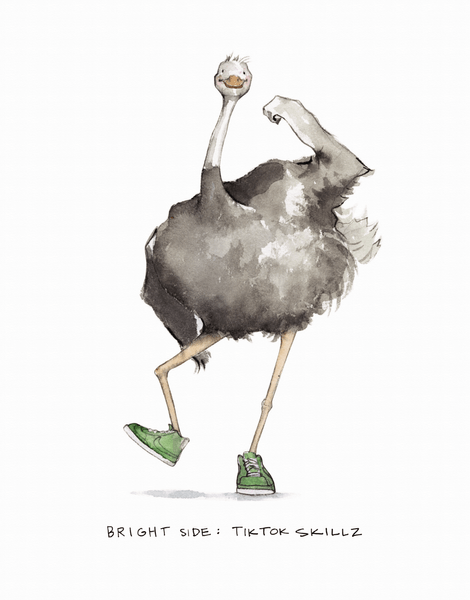 Optimistic Ostrich
