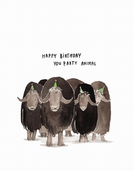 Party Animal Birthday