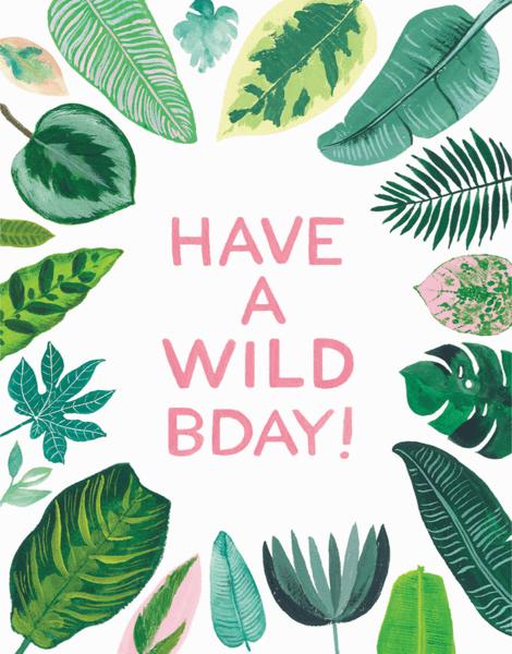Wild Birthday