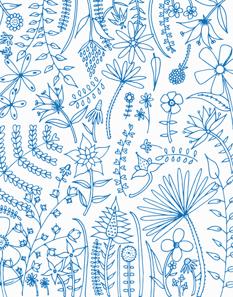 Blue Floral Outline