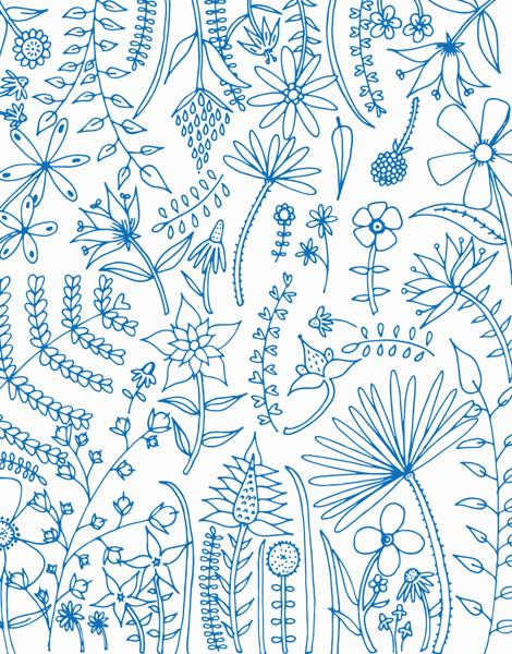 Blue Floral Outline