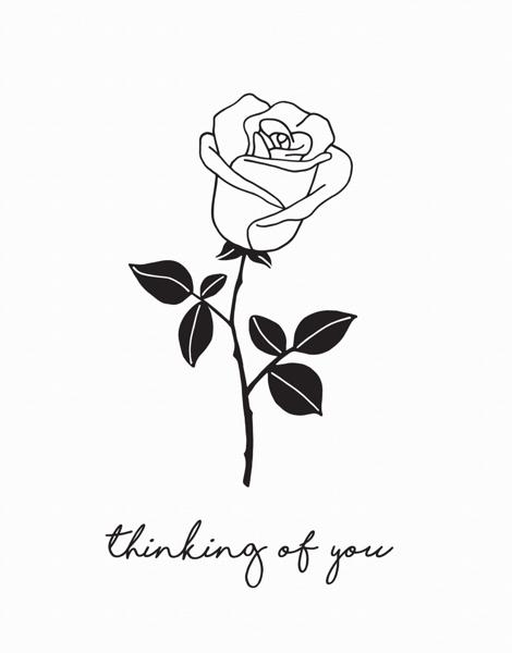 Thinking Of You Rose