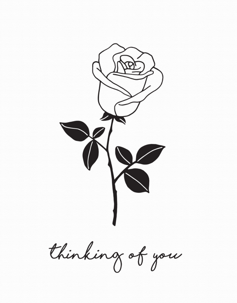 Thinking Of You Rose