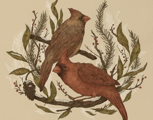 Hand Drawn Cardinals Art Card