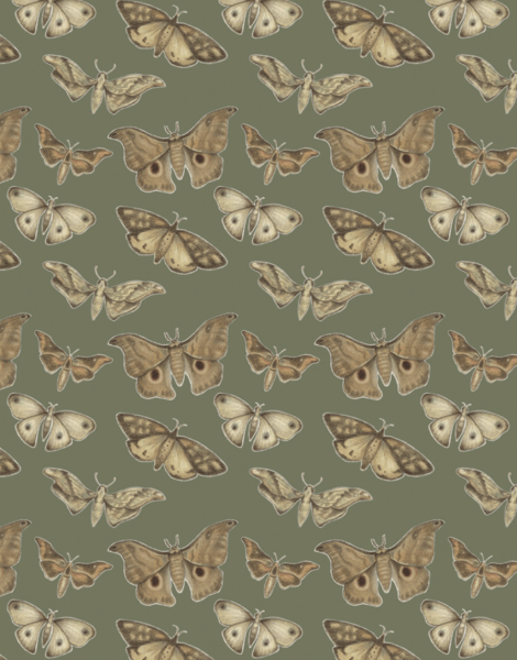 Earthy Moth Pattern Stationery