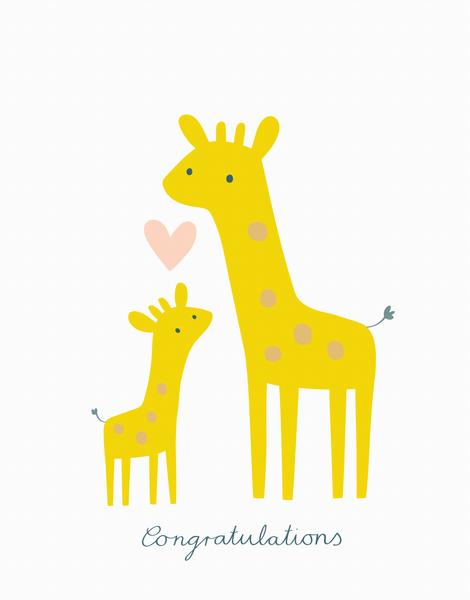 Baby Giraffes