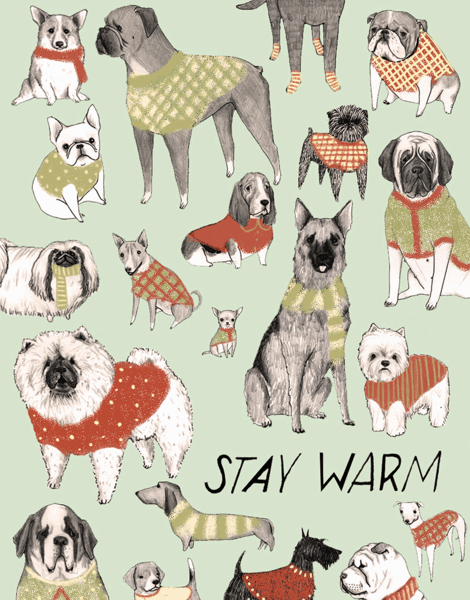 funny dog sweaters christmas greeting card