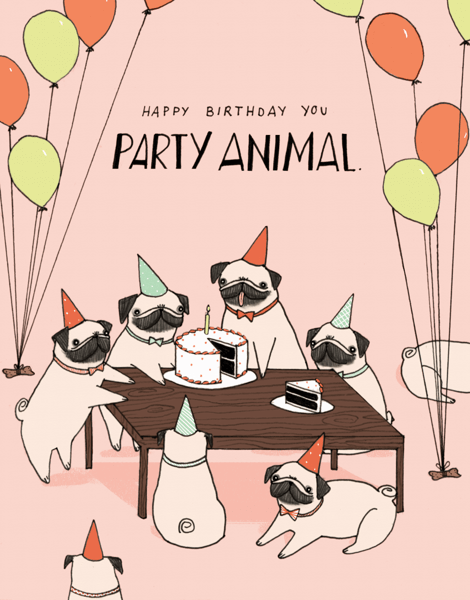 Party Animal