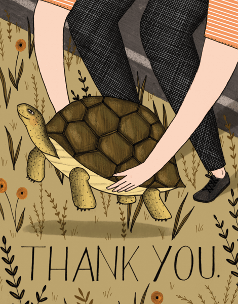 Thank You Turtle
