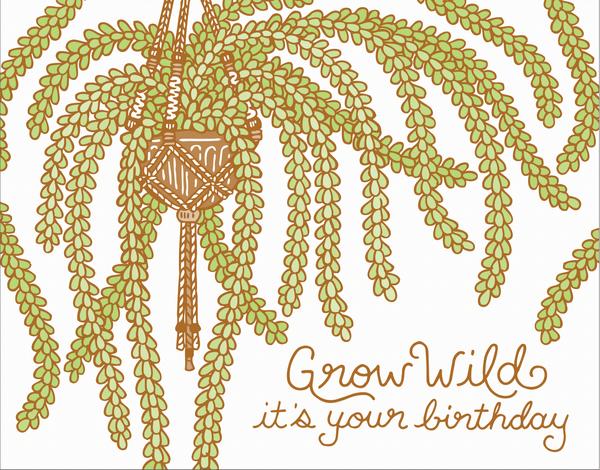 Grow Wild Plant